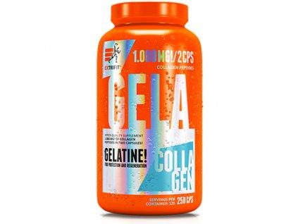 Gela 1000 mg 250cps