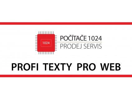 profi texty pro web