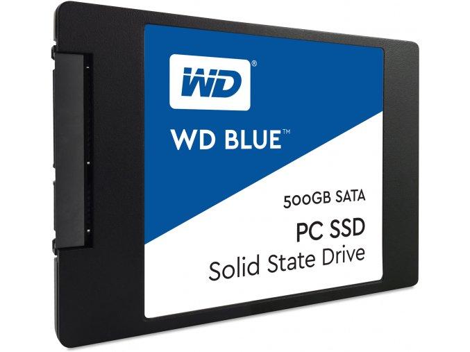 WDS500G1B0A 1
