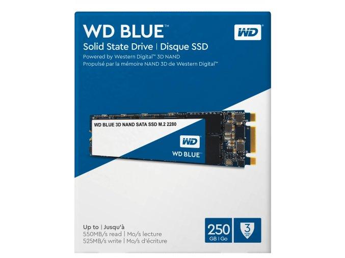 WDS250G2B0B 04