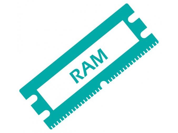 RAM 01