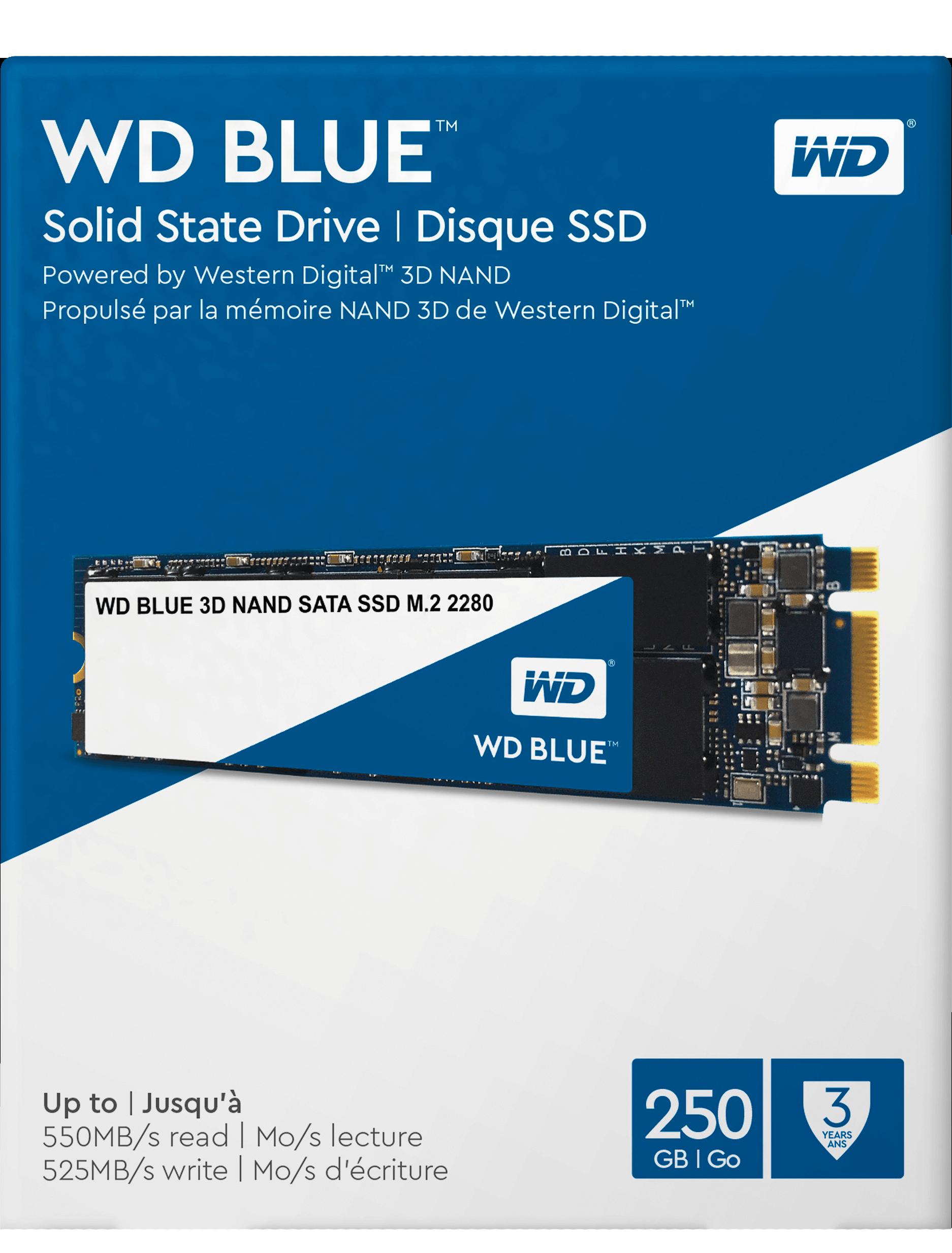 WD BLUE SSD WDS250G2B0B 250GB SATA M.2