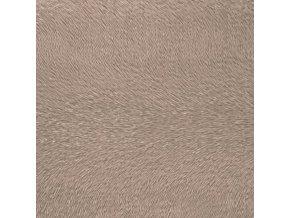 činčila bronz