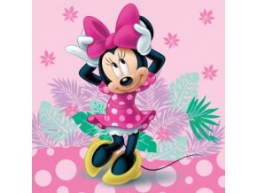 minnie 070 cushion
