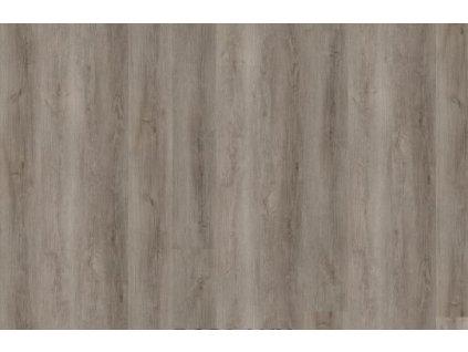 Gobi desert oak grey