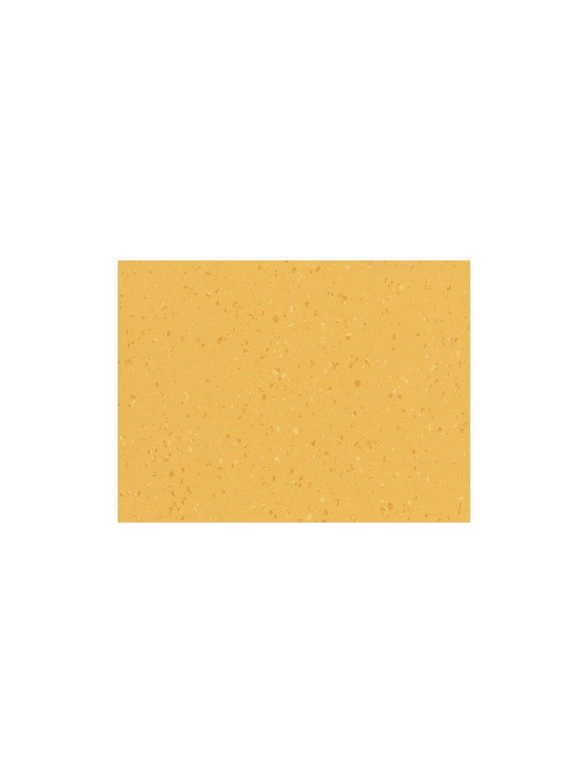 Buttered Corn 8656