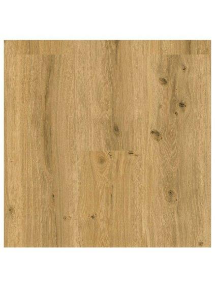 Plovoucí vinylová podlaha na HDF desce s korkem Ecoline Click 9592 Dub královský přírodní