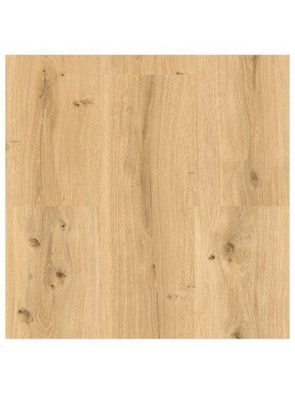 Lepená vinylová podlaha Brased Ecoline 9591 Dub královský světlý