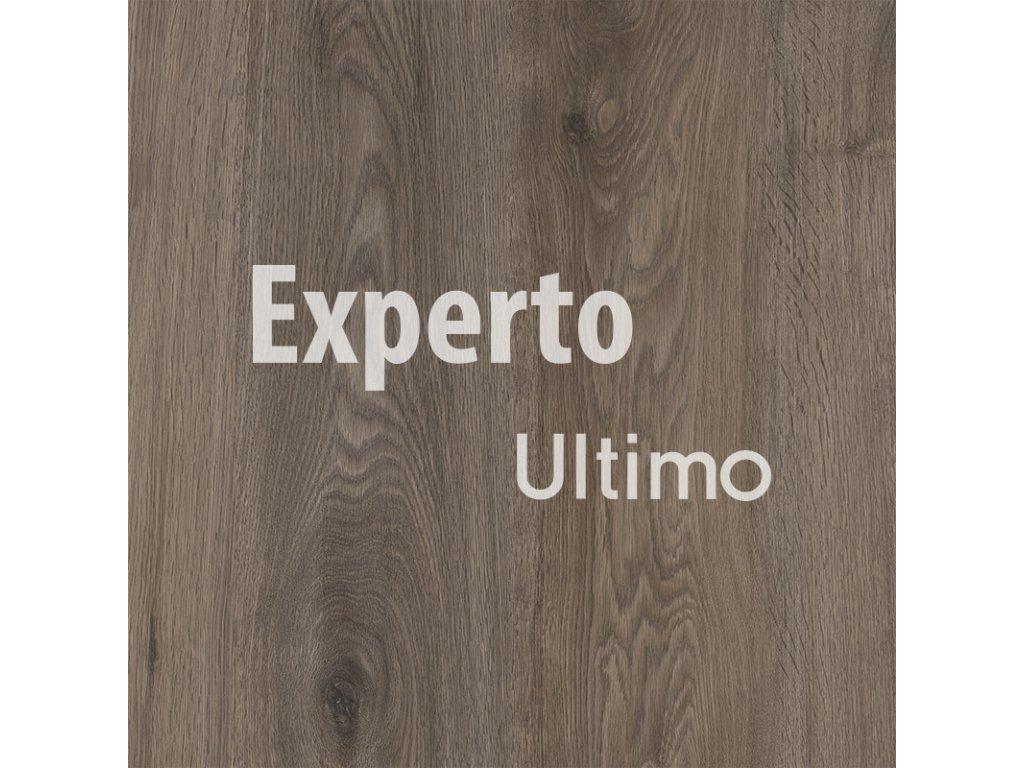 experto ultimo click chapman oak 24876