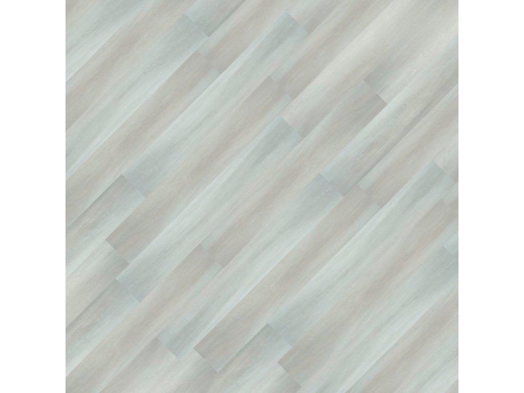 15661 3 Dub sněžný