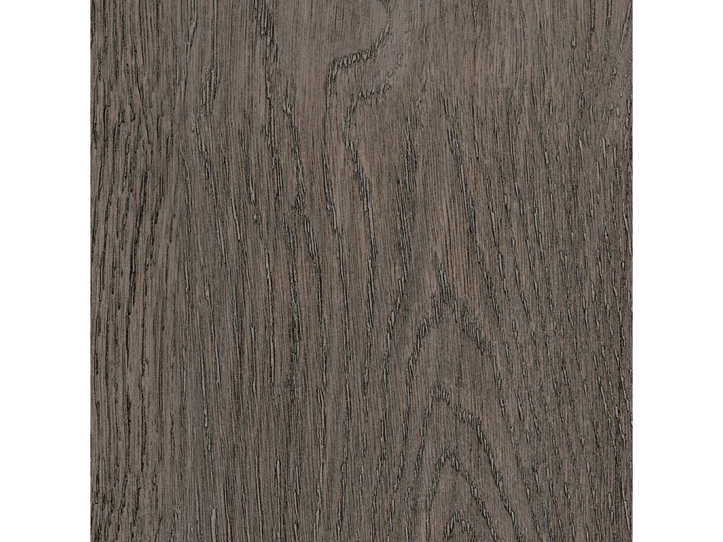 Dutch Oak SF3W2778
