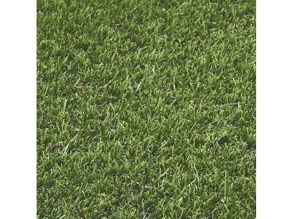 REAL GRASS 606