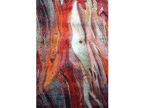 kusovy koberec rust s 21304 910 13529