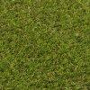 SOFT GRASS 766