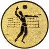 Emblém volejbal muž