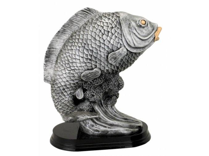 Soška ryba