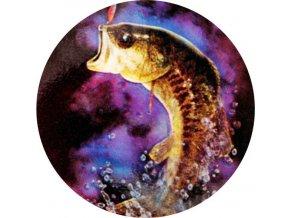 Emblém ryba