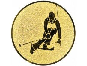 Emblém lyžování sjezdové