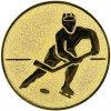 Emblém lední hokej