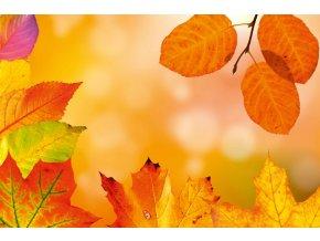 Jeseň, listy, farebné