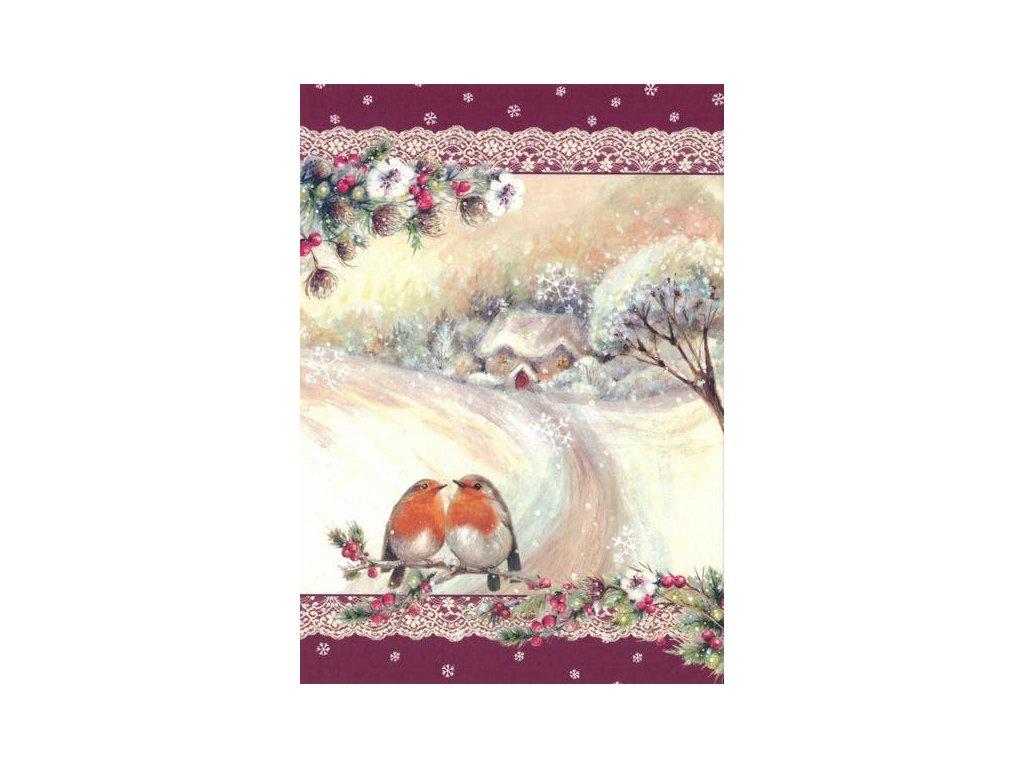 Pohlednice Vánoční - ptáčci