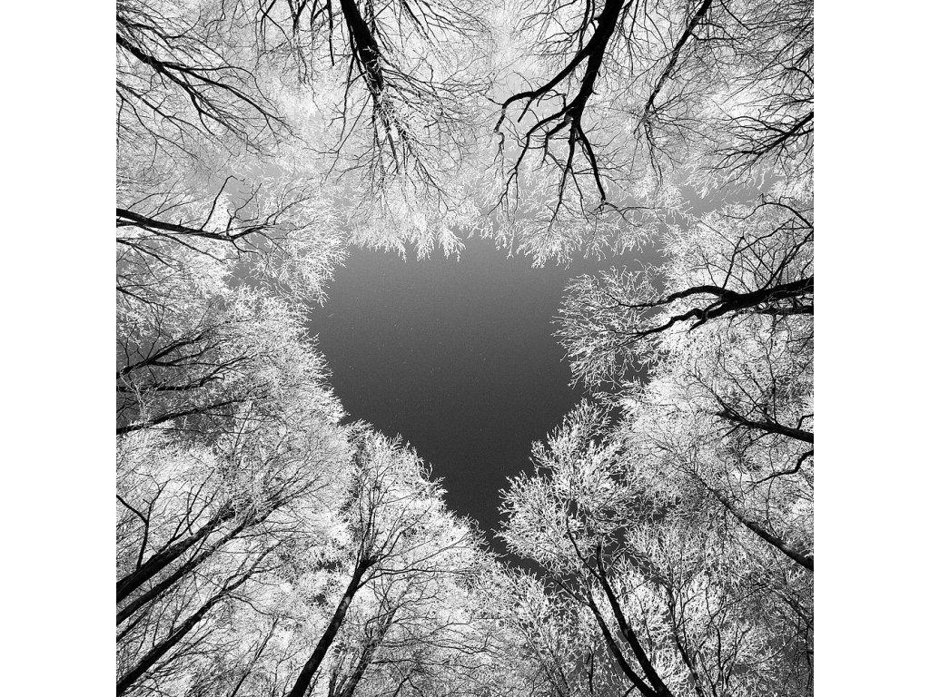 Pohlednice srdce