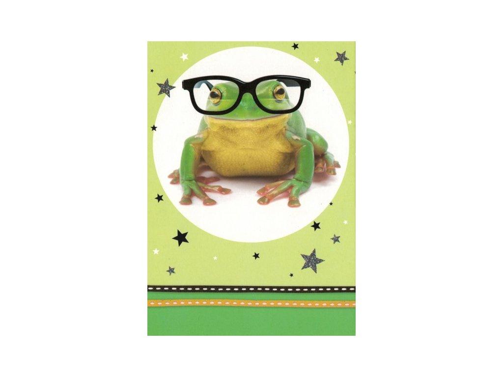 Pohlednice Žabák s brýlemi
