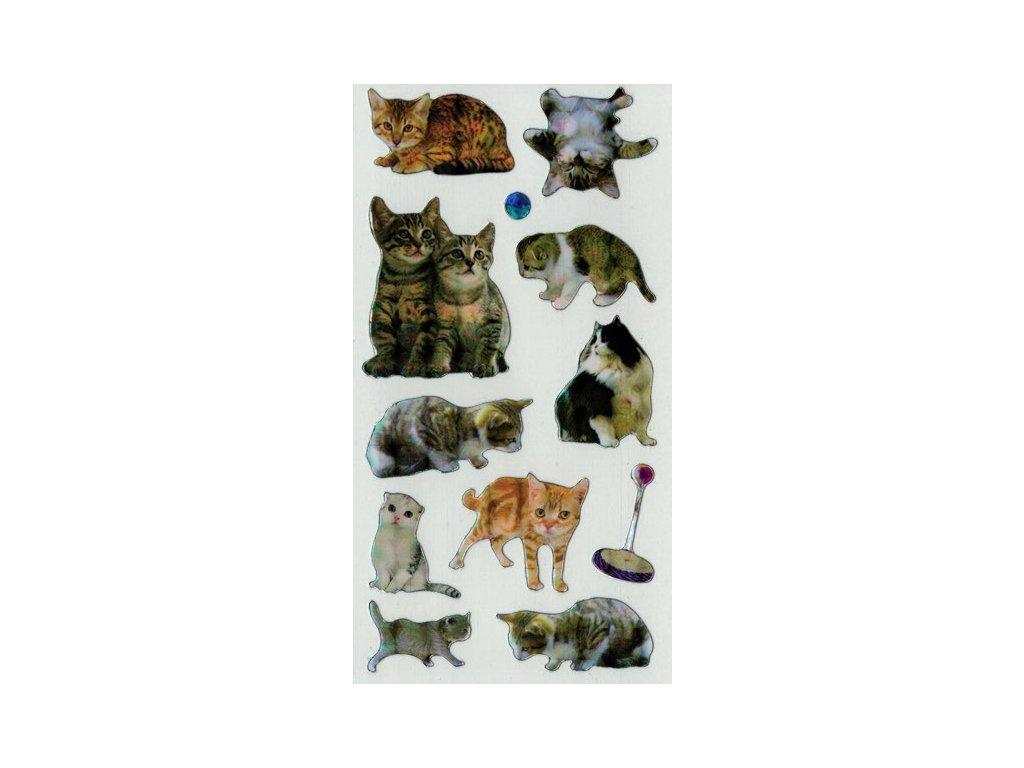 Samolepky Kočičky 3