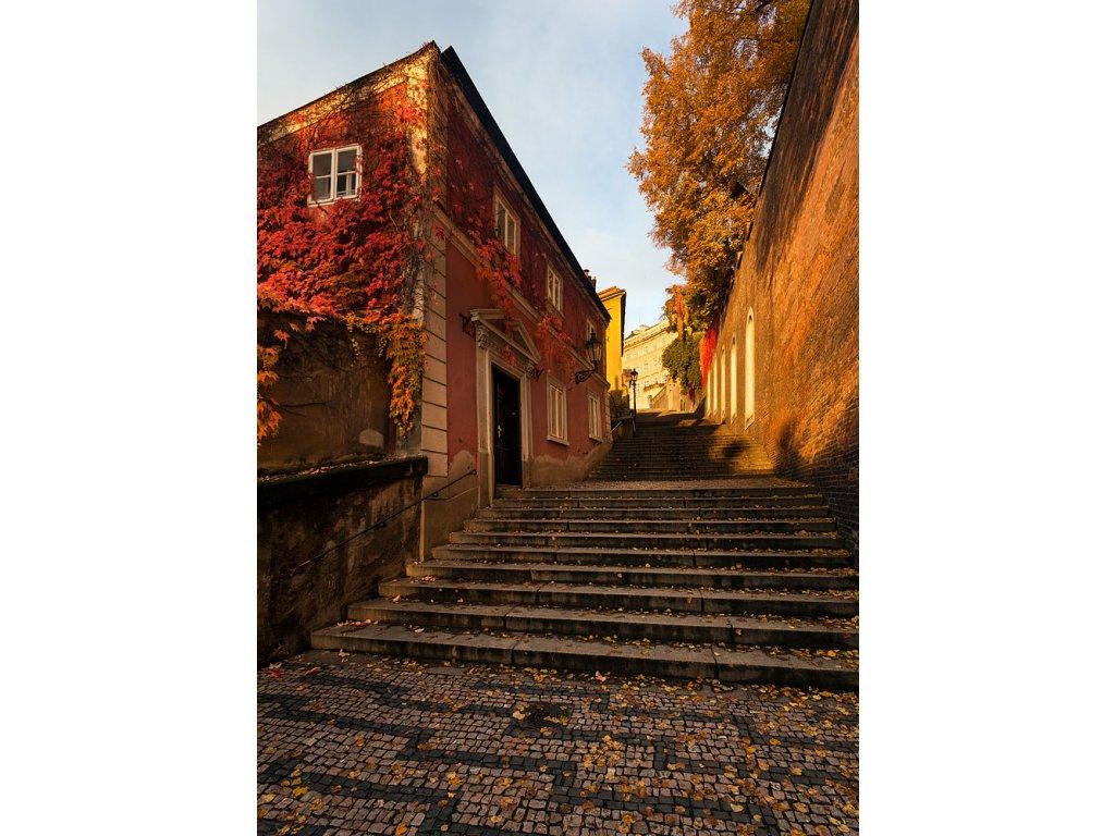 Pohlednice Zámecké schody