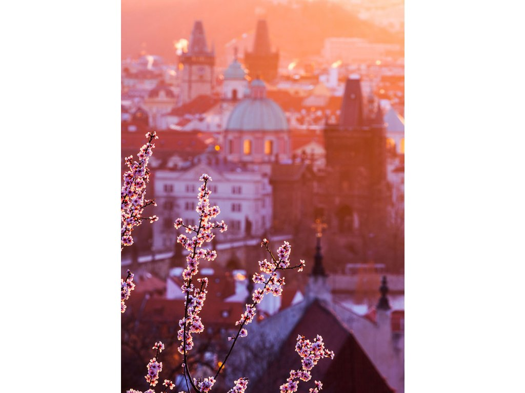 Pohlednice Jaro v Praze