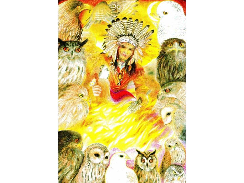 Pohlednice Slunce dravců a Měsíc sov