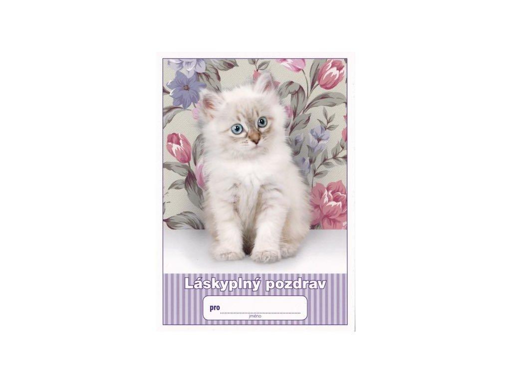 Pohlednice Láskyplný pozdrav (kočička)
