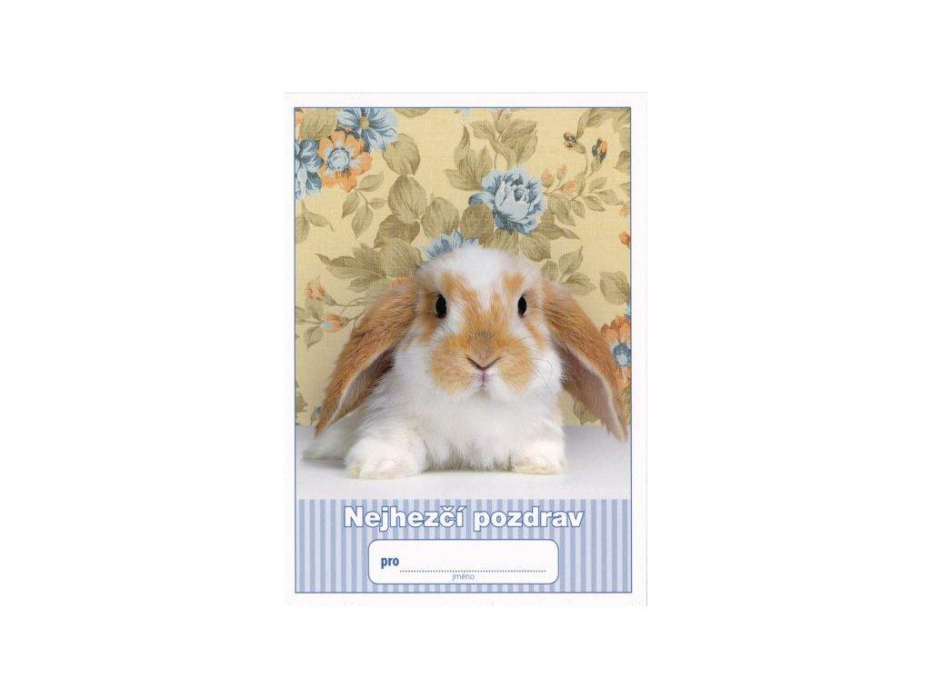 Pohlednice Nejhezčí pozdrav (králíček)