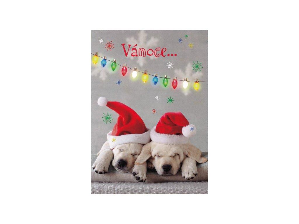 Pohlednice Vánoční přání