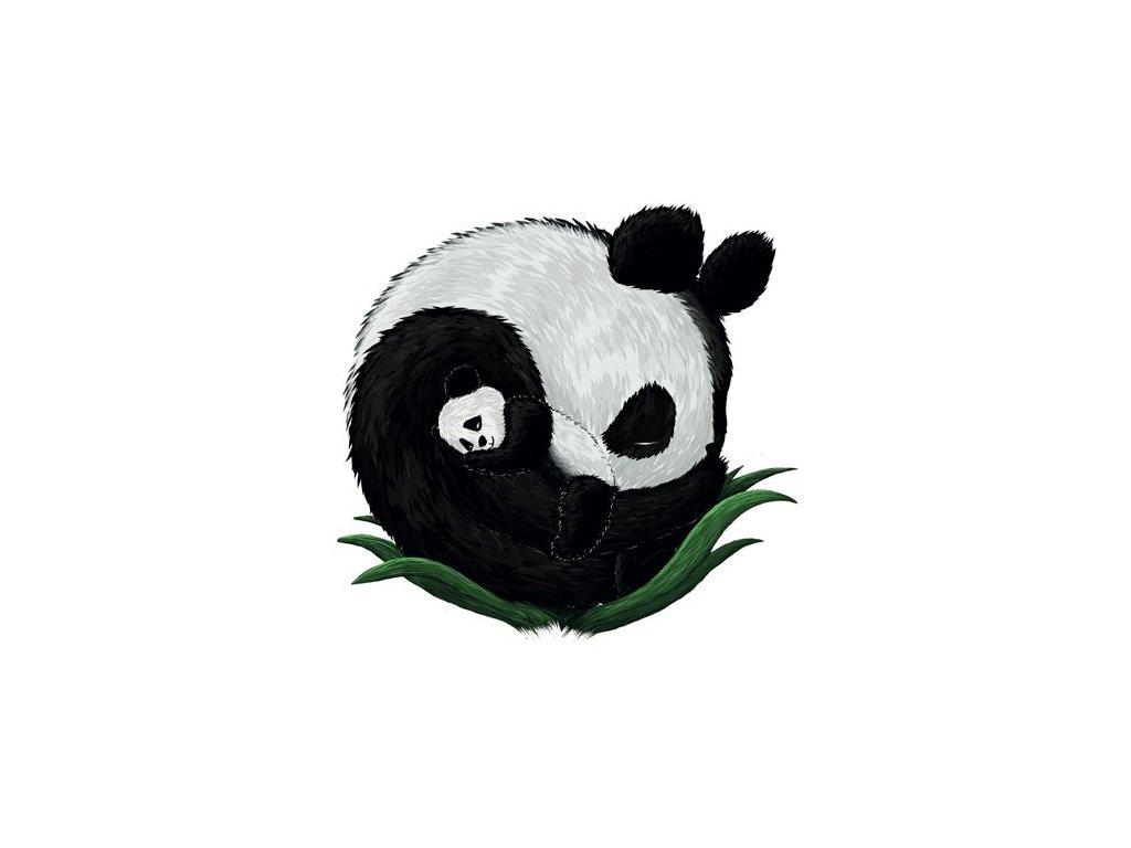 Pohlednice Spící pandy