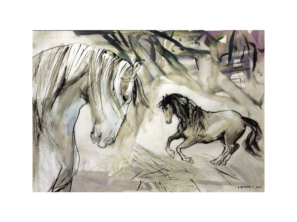 Pohlednice Koně 3
