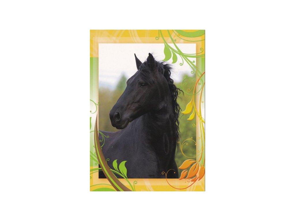 Pohlednice Kůň 46