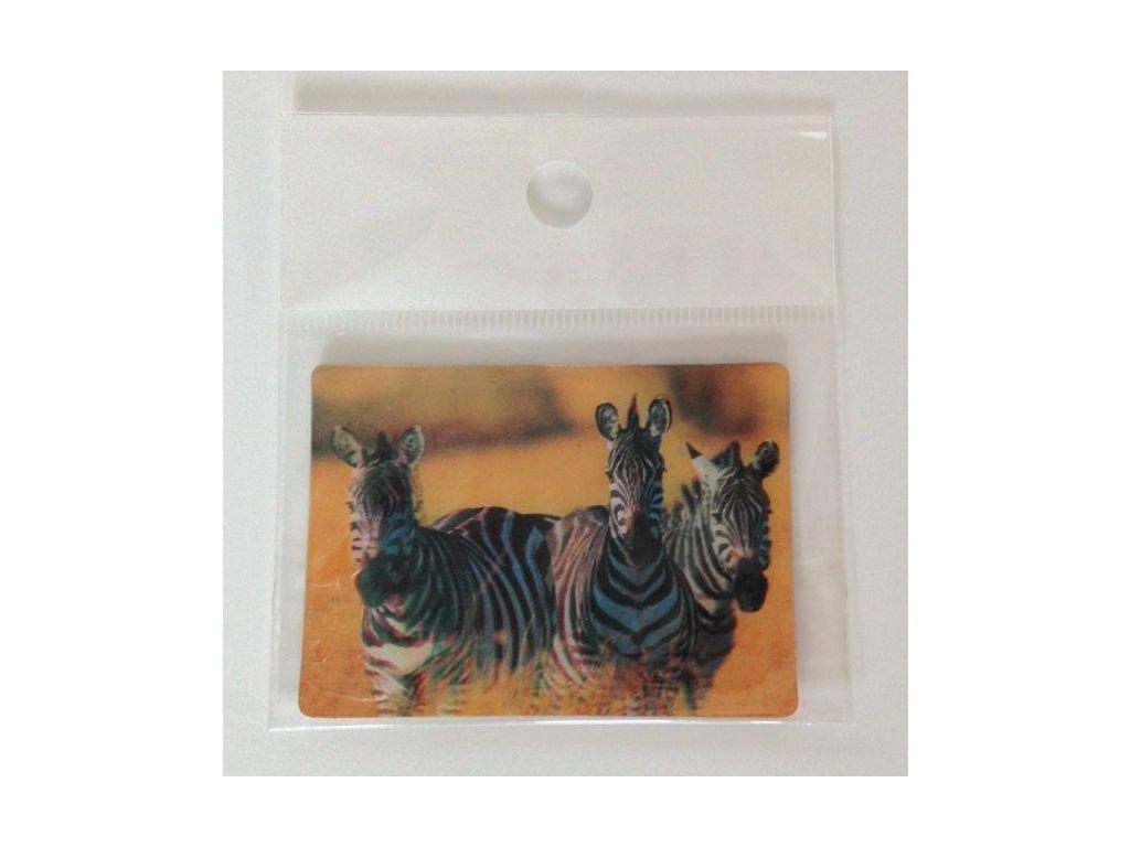 3D magnet zebry
