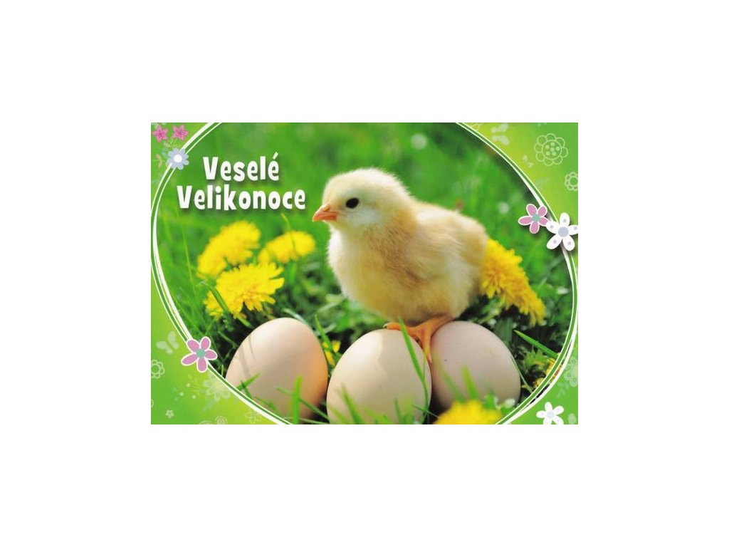 Pohlednice Velikonoční kuřátko 11
