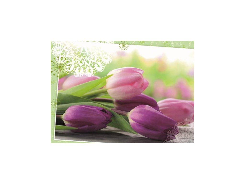 Pohlednice Tulipány 1