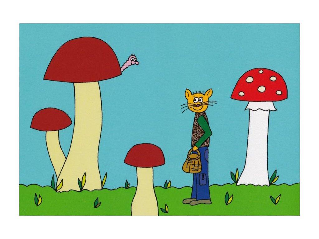 Pohlednice Kocouřisko houbařisko