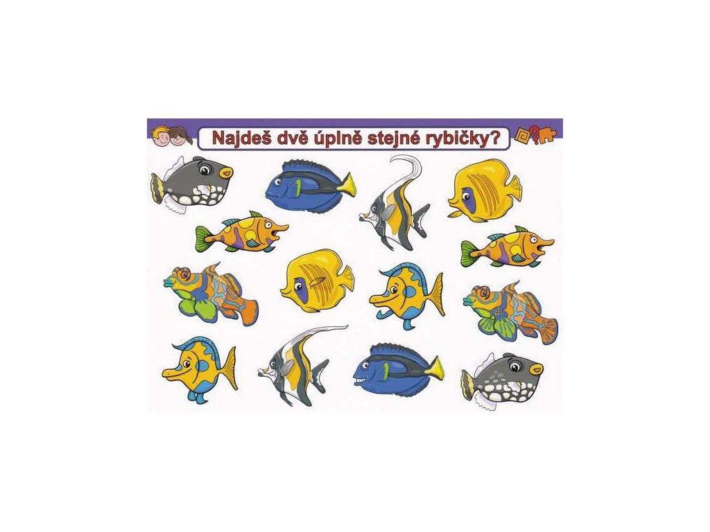 Pohlednice Najdi stejné rybky