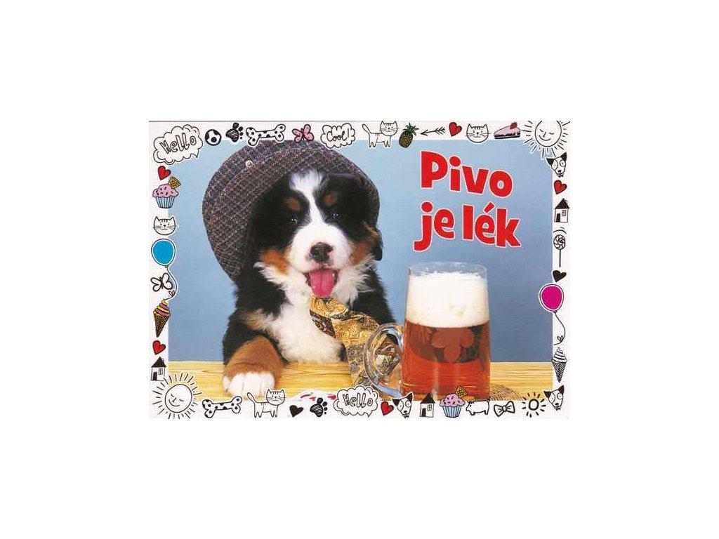 Pohlednice Pivo je lék - štěně