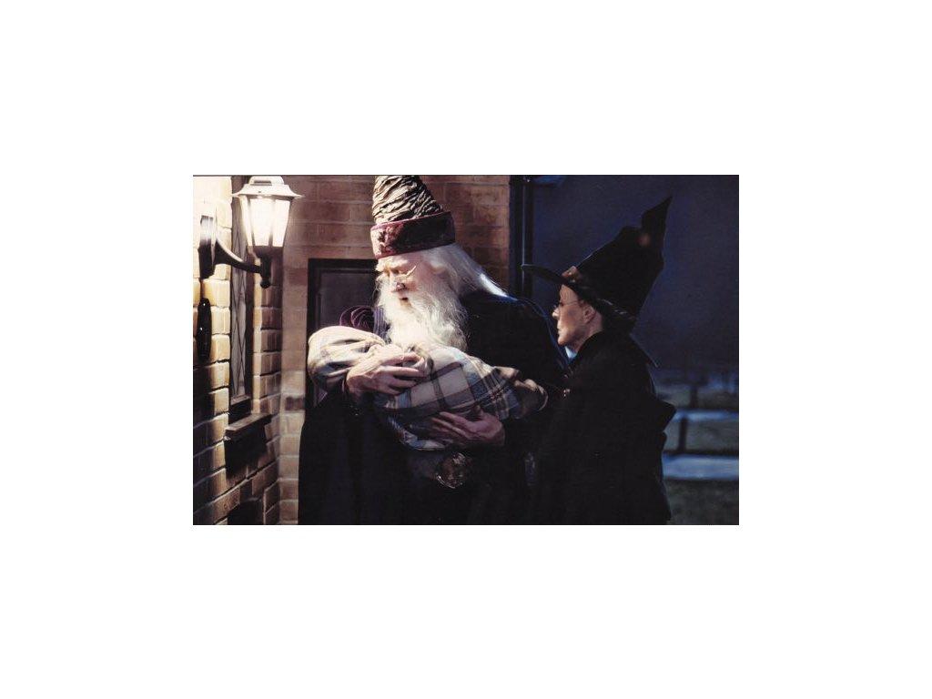 Pohlednice Harry Potter 6