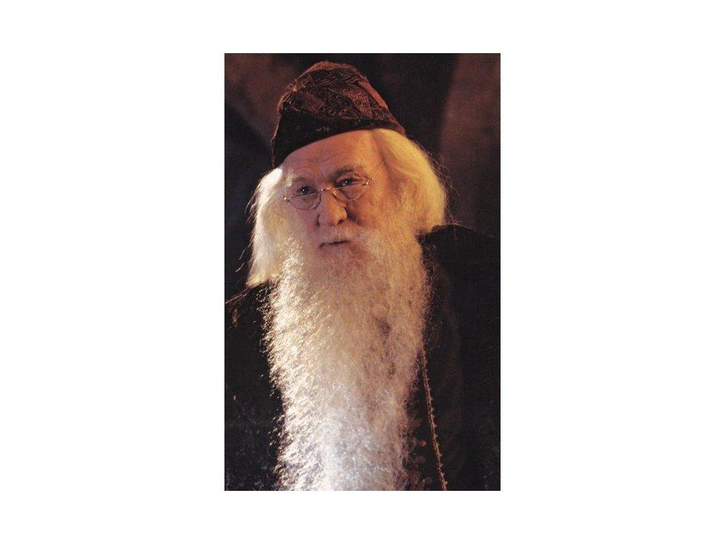 Pohlednice Harry Potter 19