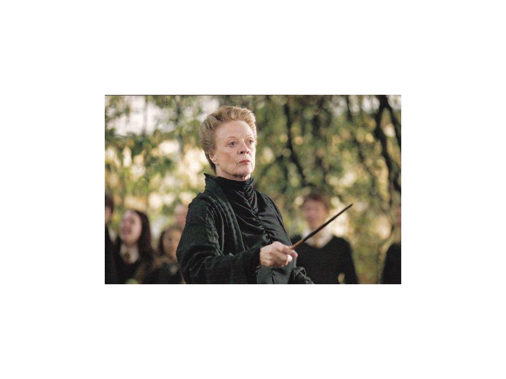 Pohlednice Harry Potter 40