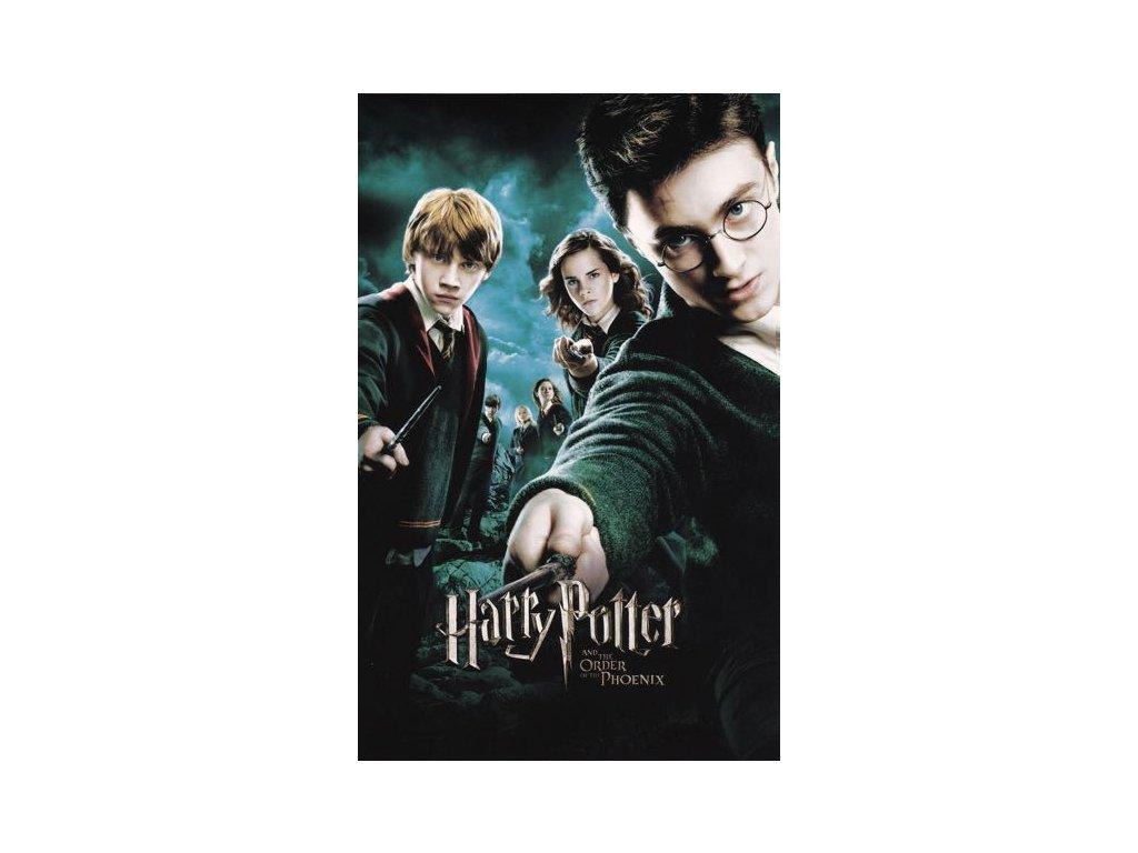 Pohlednice Harry Potter 43