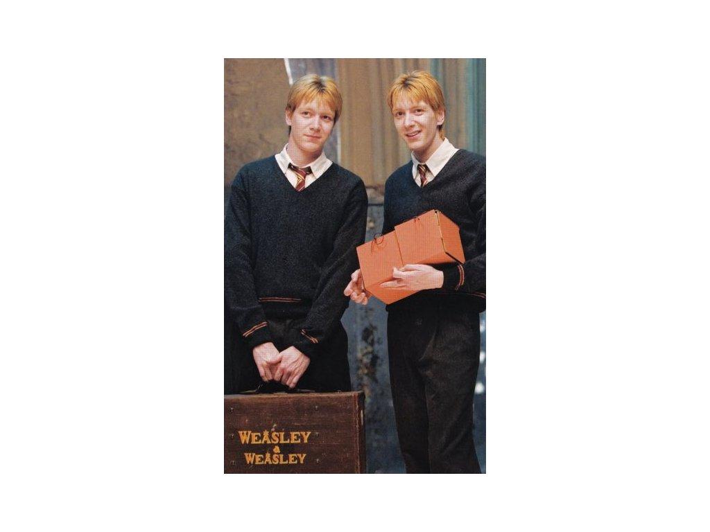 Pohlednice Harry Potter 56