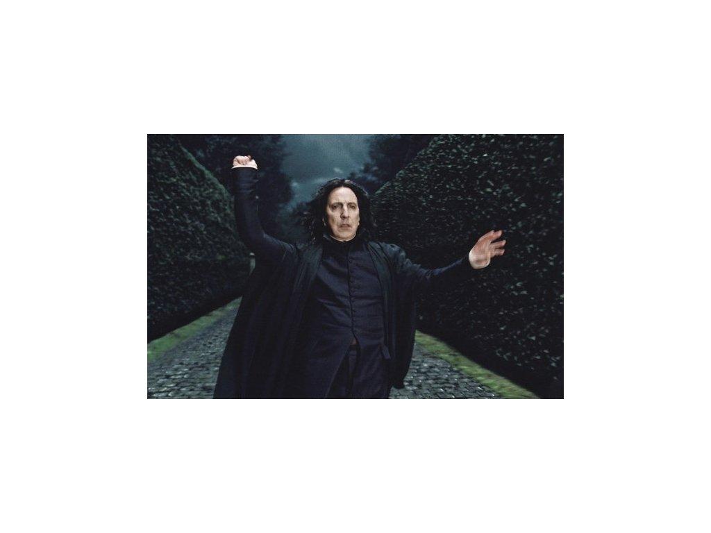 Pohlednice Harry Potter 73