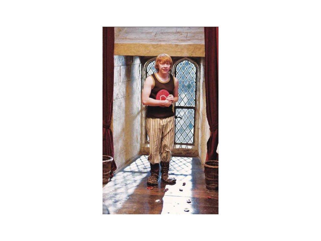 Pohlednice Harry Potter 75